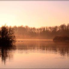 Les étangs Saint Ladre de Boves par @madine_photography