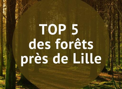 TOP 5 des Fôrets près de Lille