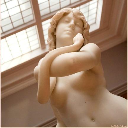 Le Musée des Beaux Arts Antoine Lécuyer par @les_photos_de_jessye