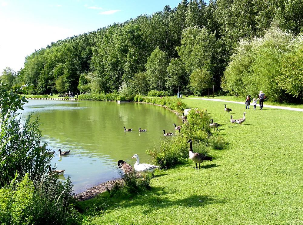 parc des 6 bonniers willems près de lille enfants