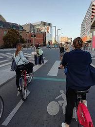 visite guidée Lille à vélo