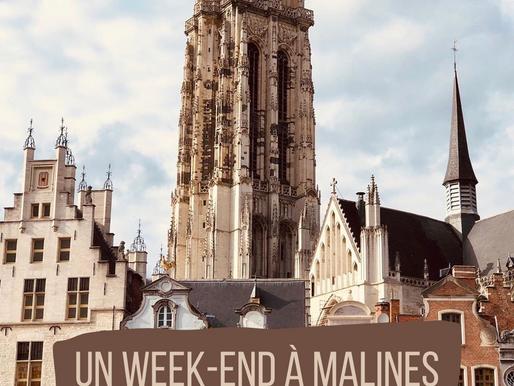 Malines : Un retour au 16e siècle !