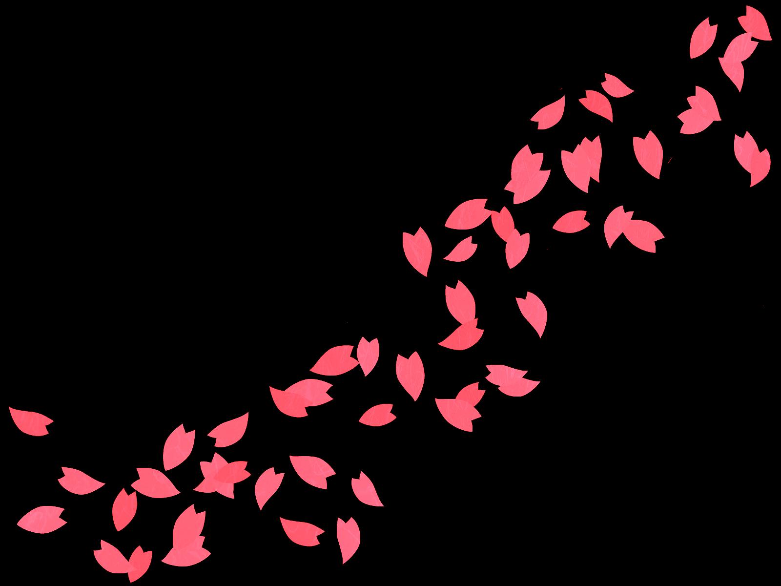 桜吹雪3_edited.png