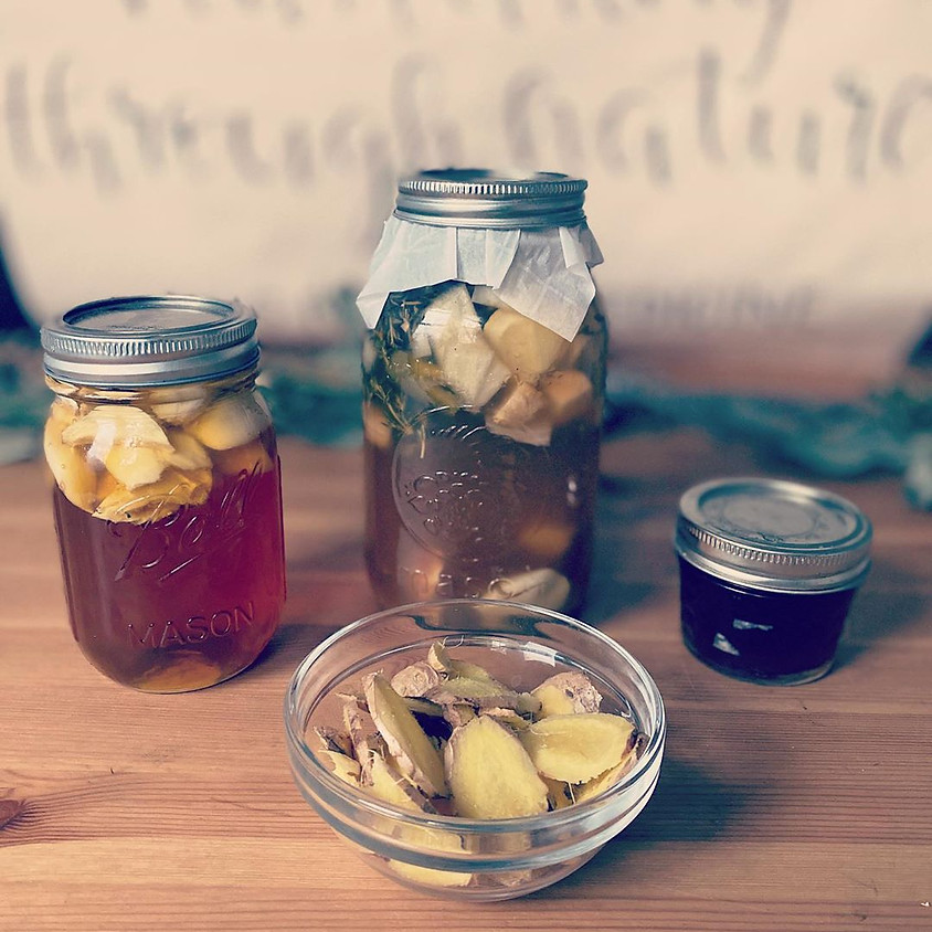 DIY Herbal Remedies with Carly!