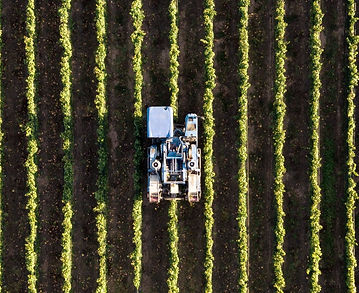 Agriculture_edited.jpg