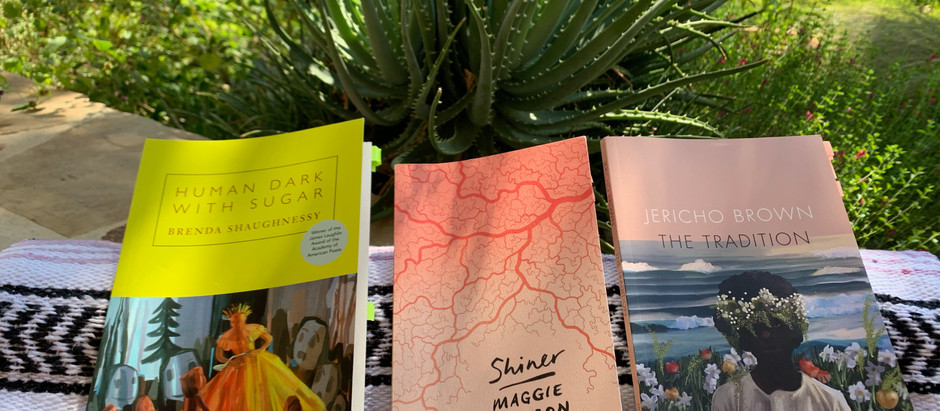 2020 in Books (so far): Poetry