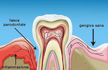 periodontology.jpg
