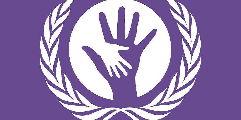SoCHum – Comitê para Assuntos Sociais, Culturais e Humanitários