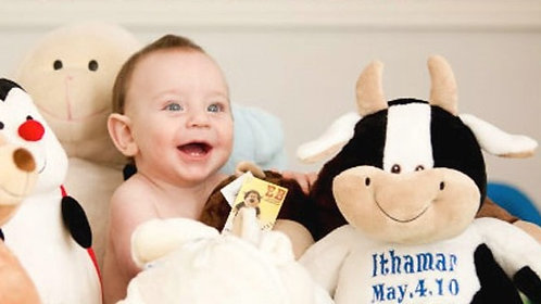 "16"" Farm plush toys"