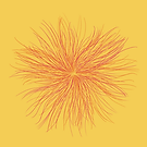 03. Color over Yellow.png