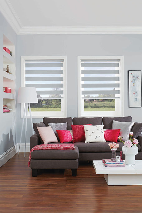 Duo Roller Blind Vision