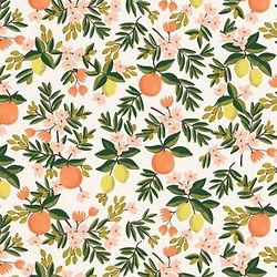 citrus-floral-cream-rifle-paper-co_edite