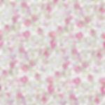 liberty-eloise-rose_edited.jpg