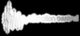 VibrationControl_Colour_Logo3.png