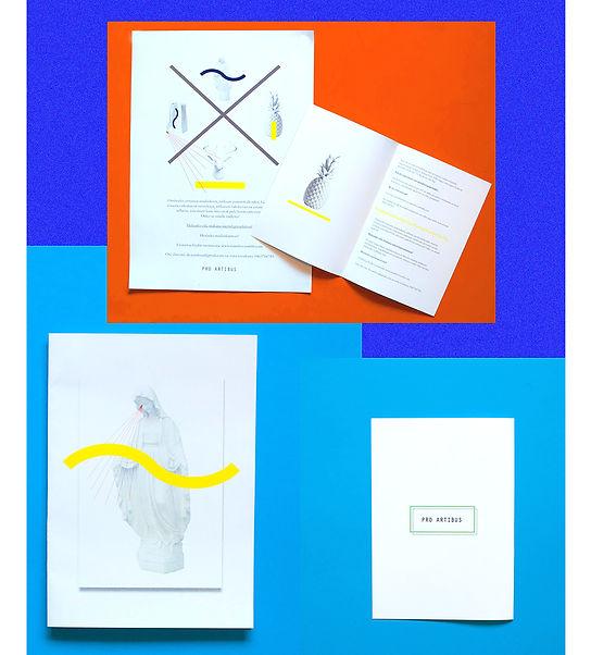 "Visual identity for Pro Artibus exhibition ""Vi har samlat"" by graphic designer Johanna Bruun"