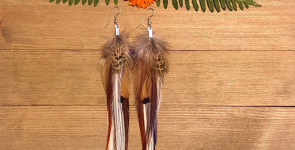 Forest Pheasant - Medium Feather Earrings