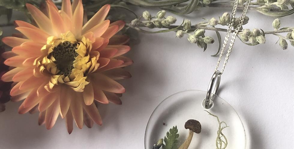 Mushroom, Moss, Lavender, Elderflower & Fern