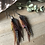 Thumbnail: Dark + Stormy - Small Feather Earrings