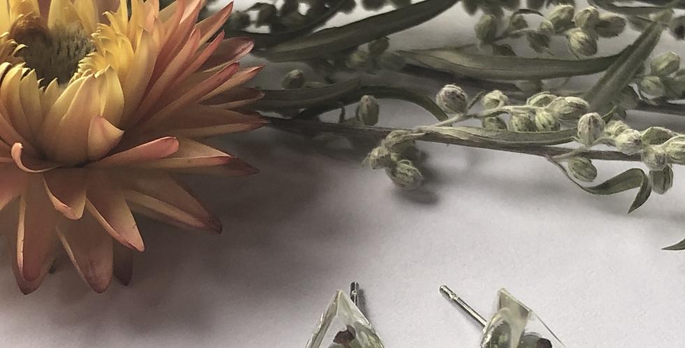 Fern +Elderflower + Mushrooms - Itty Bitty Botanical Studs