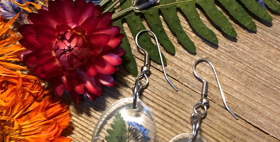 Forget Me Not, Fern & Poppy - Handpicked Botanical Earrings