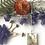 Thumbnail: Fern + Flower