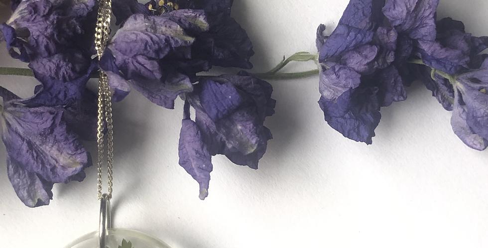 Fern + Flower
