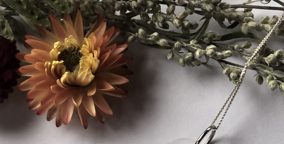 Queen Anne's lace & Alyssum