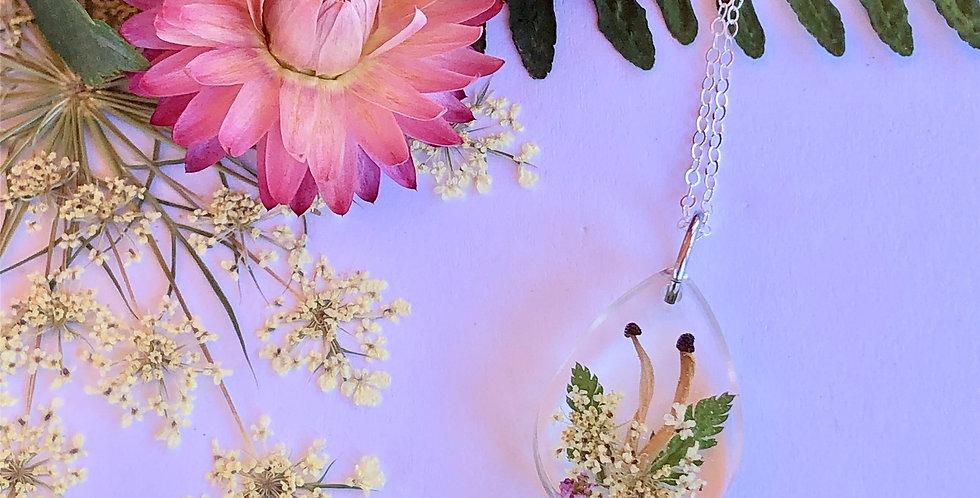Queen Anne's Lace, Yarrow, Mushrooms & Ferns