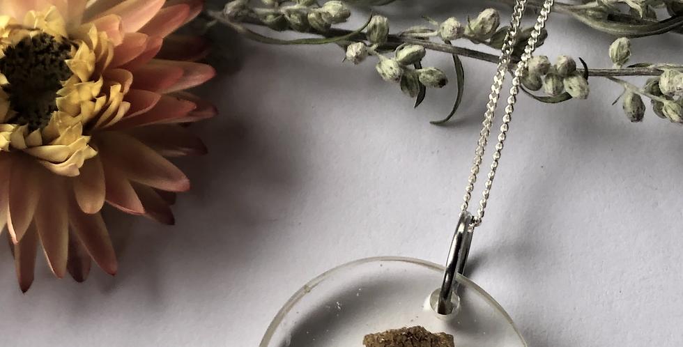 Helichrysum, Queen Anne's lace, Viola, Mushroom & Fern