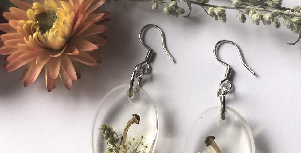 Helichrysum, Queen Anne's lace, Mushroom & Mugwort