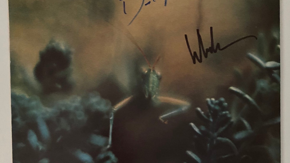 Steely Dan Katy Lied LP Cover Autographed