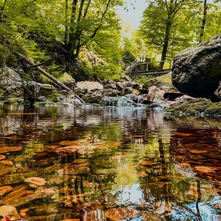 Op zoek naar natuur en verkoeling in de Belgische Ardennen? Ontdek de wandeling langs de Hoëgne!