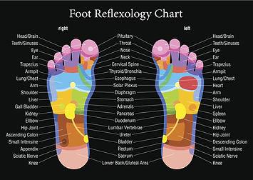 Web foot map.jpg