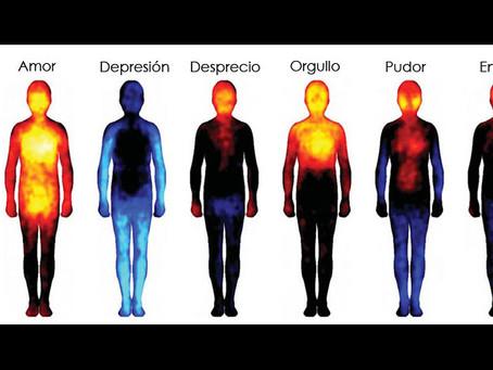 Cómo reacciona el cuerpo a las emociones