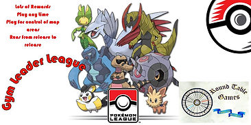 Pokemon Gym Leader League.jpg
