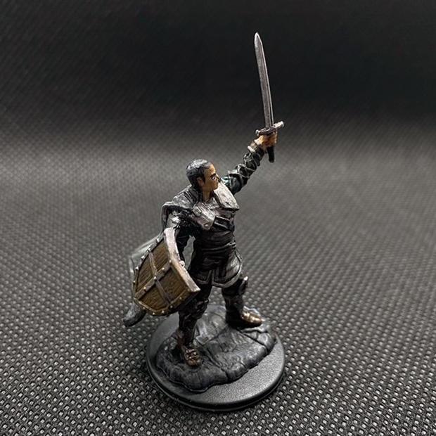Nolzur's Marvelous Miniatures W13 Human Paladin