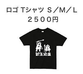 Tshirts_180405_0003_edited.jpg