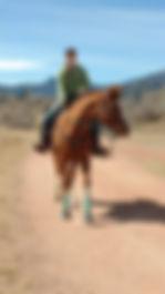 FOTESC poker ride horse with girl.jpg
