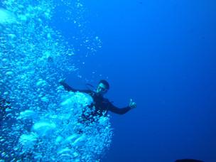 צלילה לבד (2).JPG
