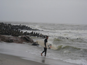 ארז גולש בחברת כלבי ים בנמביה.jpg