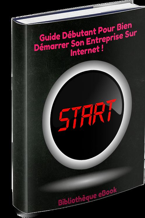 Guide Débutant Pour Bien Démarrer Son Entreprise Sur Internet ! (PDF DRM)
