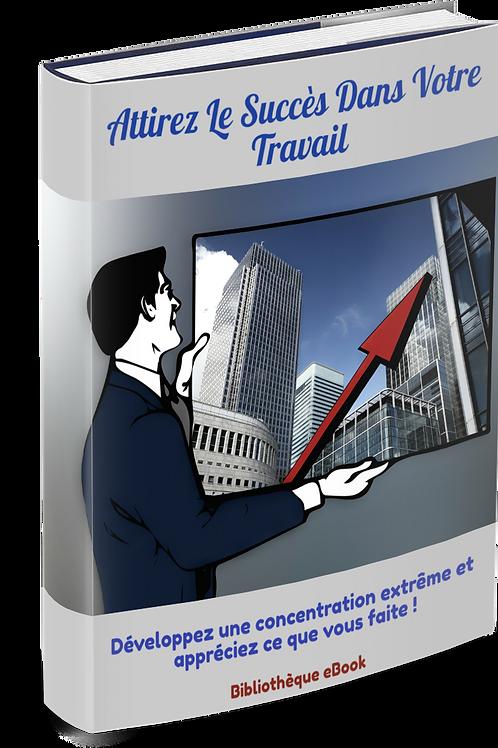 Attirez Le Succès Dans Votre Travail  (PDF)