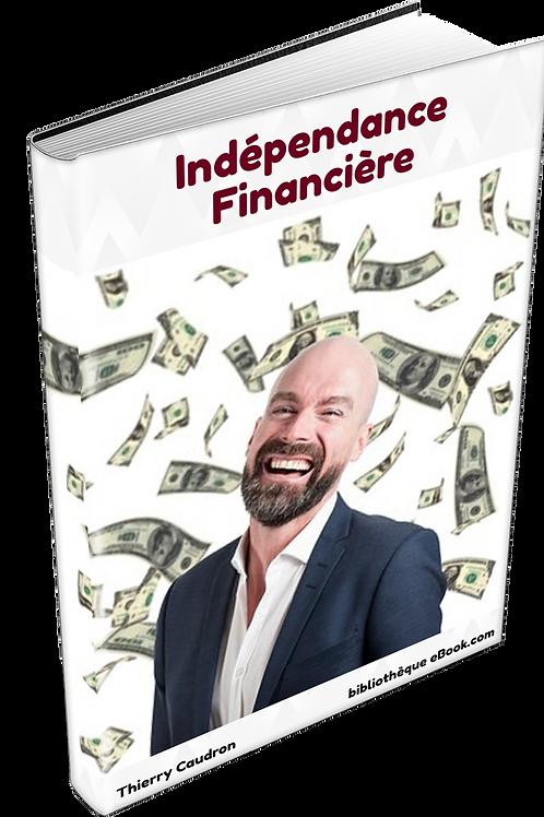 Indépendance Financière (DLP PDF)