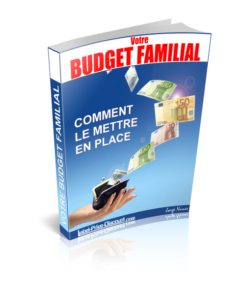 Comment Mettre En Place Un Budget Familial Pdf Drs
