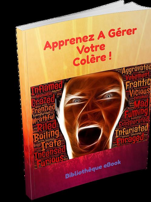 Apprenez A Gérer Votre Colère ! (PDF DLP)