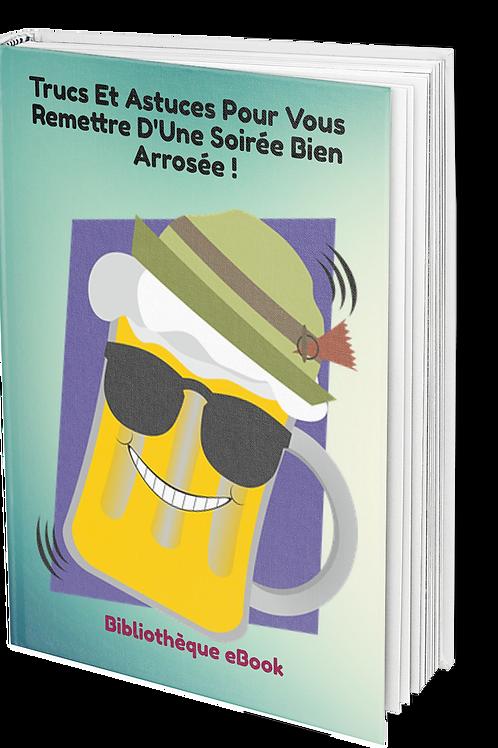 Trucs Et Astuces Pour Vous Remettre D'Une Soirée Bien Arrosée ! (PDF DLP)