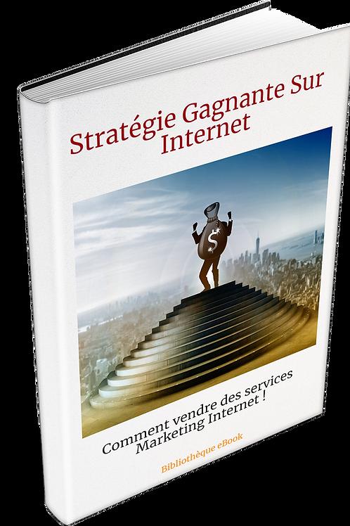 Stratégie Gagnante Sur Internet  (DRM PDF)