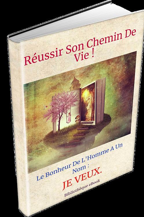 Réussir Son Chemin De Vie  (DRS PDF)