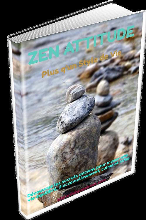 Zen attitude (PDF)