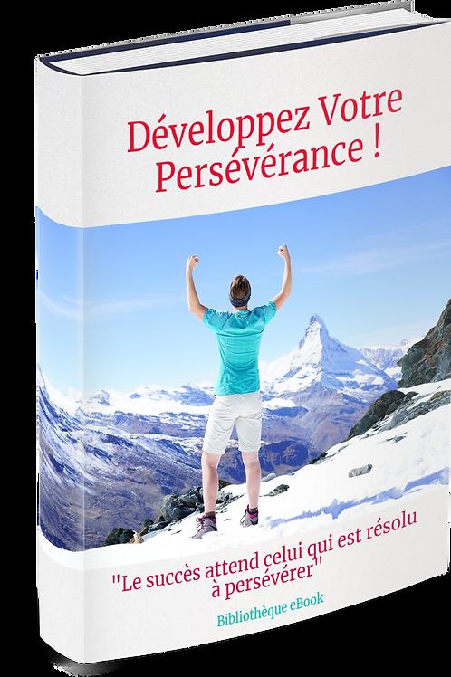 Développez Votre Persévérance  (DRM PDF)